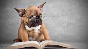 How reading several books at the same time can mess up your sanity (1/2)