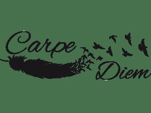 www carpediemfordiane org